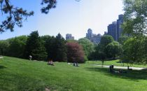Cedar Hill Central Park Near Met Panoramic